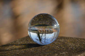 ball by PhotosdeLau