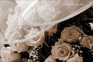Weddings II by Irrence