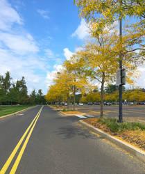 Fall Day In October - Warrington Pennsylvania