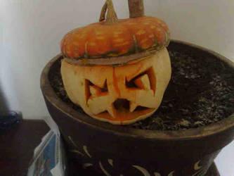 crazy pumpkin part 2