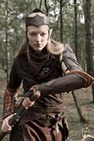 Merilfaen - Ready For Battle by MissViscid
