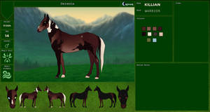 Killian | Verensa Herd | CRPG