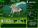 CRPG | Verensa Herd | Mackenzie | NPC by AppyNinja