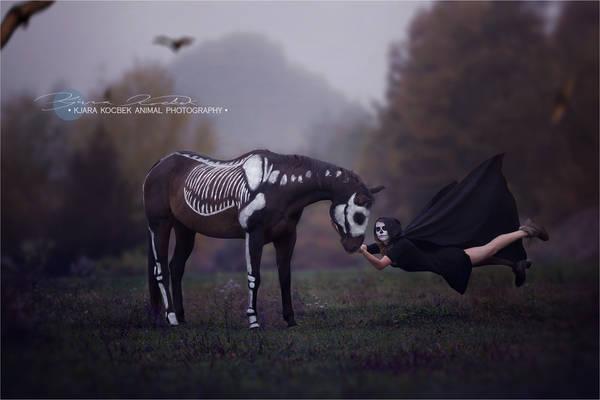 Halloween Lullaby