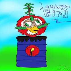 Looney Bird