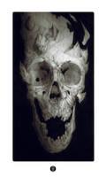 Fragmented skull