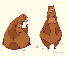 a bear by Kecky