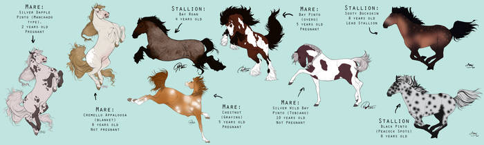 Colored Horsies