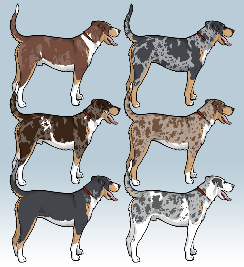 Merle Catahoulas 322491058 further German Shepherd Artwork Prints Paintings Canvas Wall Decor likewise 1 Old English Sheepdog The Irish Image Collection likewise Brian Honors New Brian And Vinny For DOG D 453130964 likewise The Machine 325361666. on dog breed prints