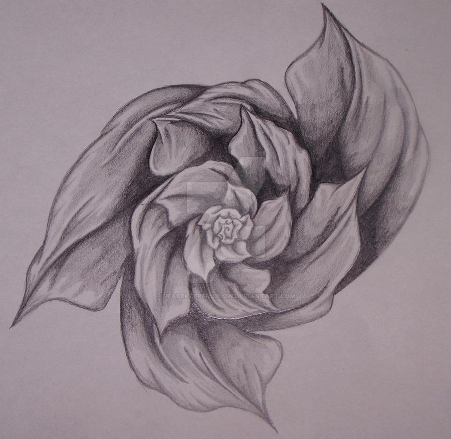 Abstract rose tattoo by peacekeeperj3low on deviantart for Abstract rose tattoo