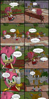Amy and Tails resquest