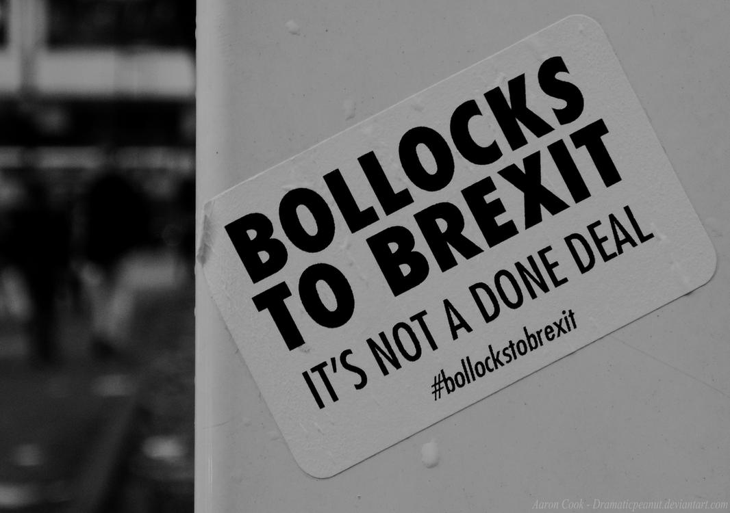 Bollocks To Brexit by dramaticpeanut