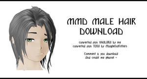 MMD - Watchers Gift - Soft Male Hair + DL by IamMaemi