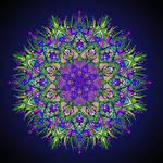 Purple Passion  by Wazaga