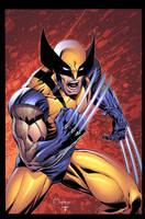 Wolverine Marat by juan7fernandez