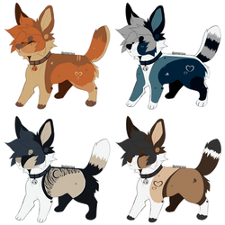 Canine Adoptables -02- || OPEN - REDUCED
