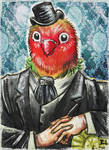 Victorian Parrot