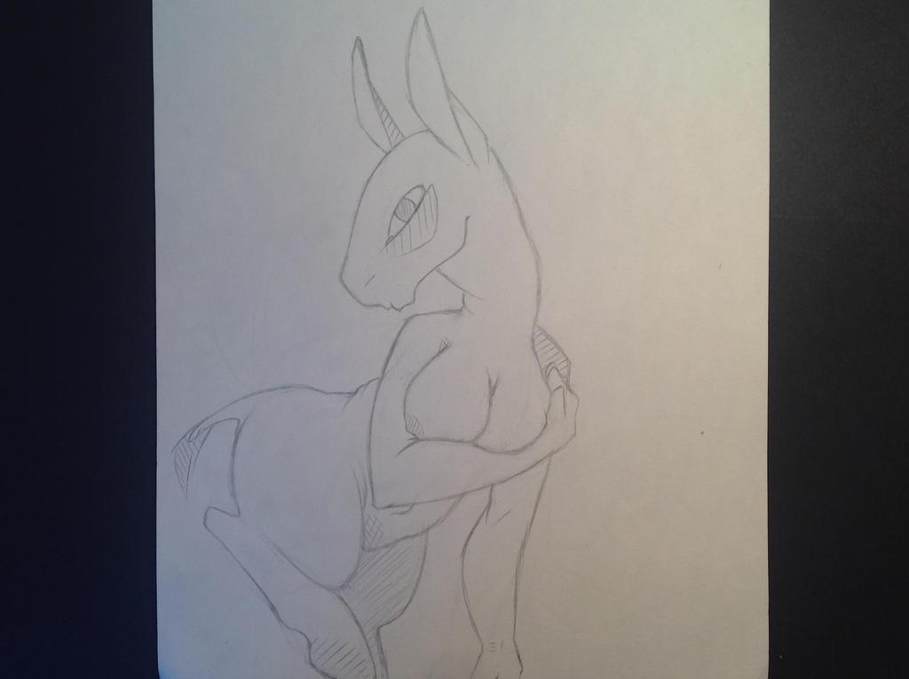 La mule by Simon-LeRoiDesTartes