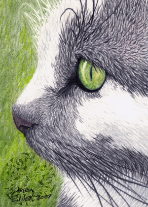 Black, White, and Green ACEO by sidneyeileen