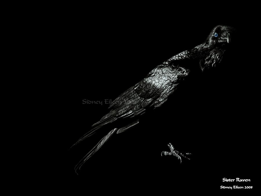 Sister Raven by sidneyeileen