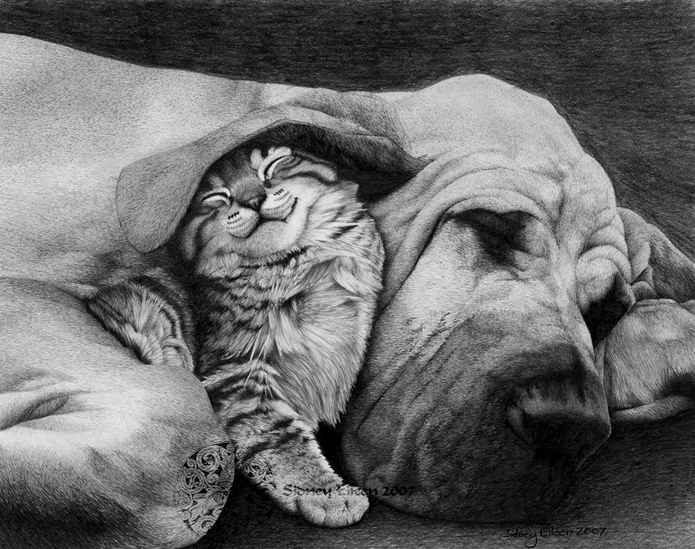 The Best of Friends by sidneyeileen