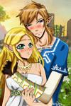 BoTW: Zelda x Link (The legend of Zelda)