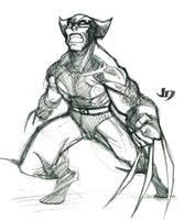 DSC - Wolverine