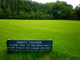 Trinity College grass by Gardek