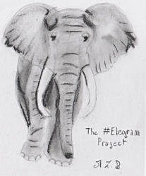 The Elegram Project by MissLucidaBlood