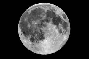 Full Moon by mole2k