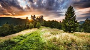 Path to sun by Dybcio