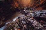 Autumn river II