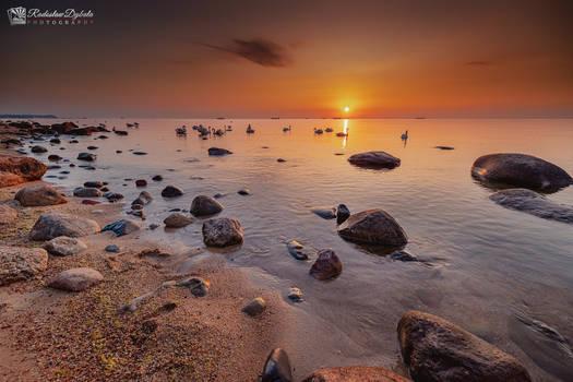 Baltic sunrise III