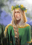 Summer Finrod by Skvorr