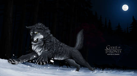 A Song of Ice and Fire - The Wolf Queen by 25Tachigami