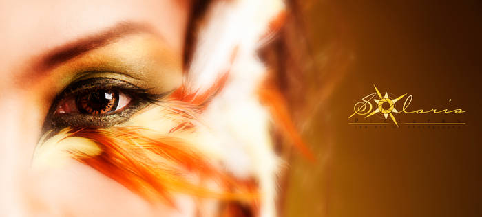 Eyes of Prinia