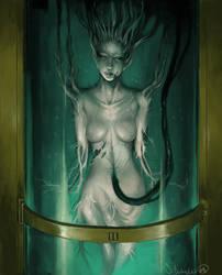 The_alchemists_wife by zombie-ninja