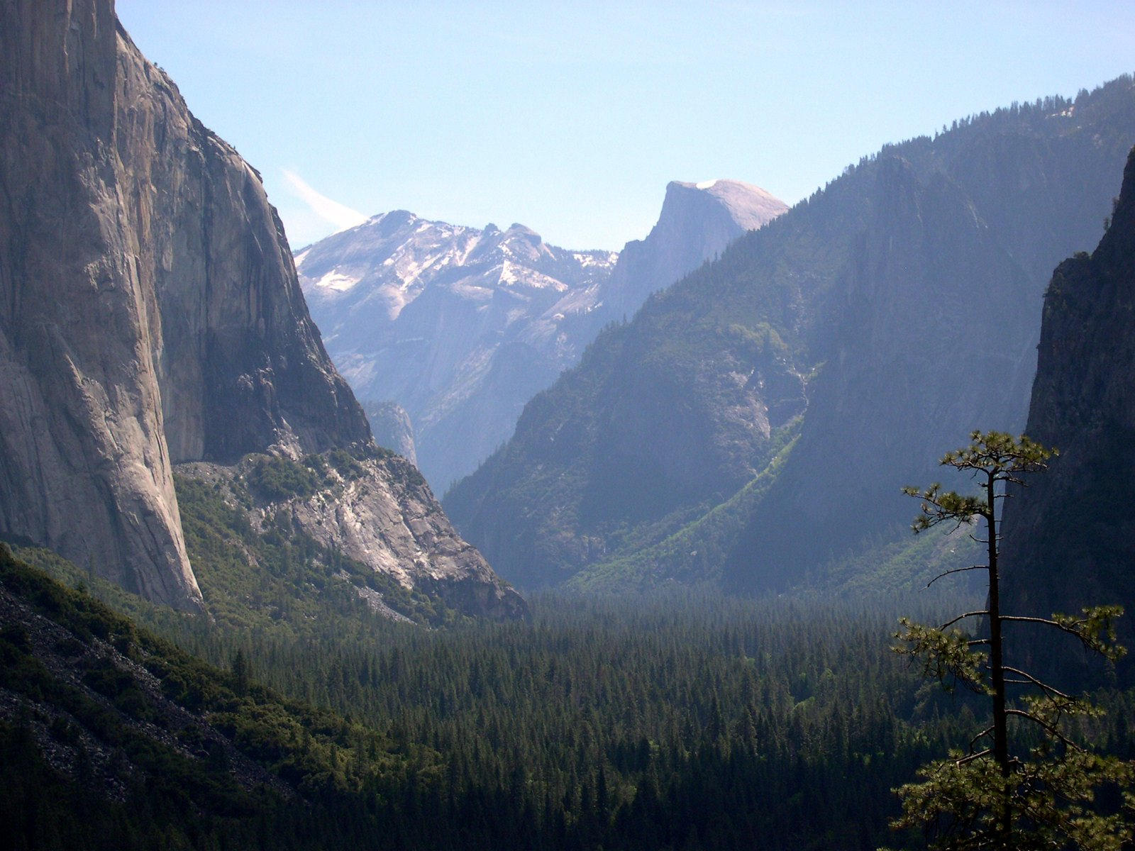 Yosemite National Park IV by dhunley