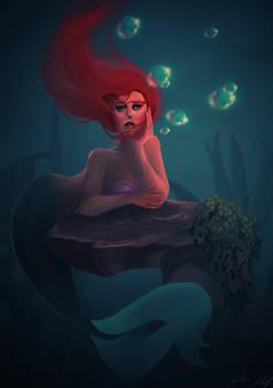 2016 Ariel