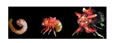 Membracidae by AoiUchida