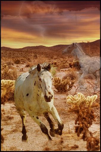 ^ Twilightstars ^ horses Random_Horse_Manip_by_czan