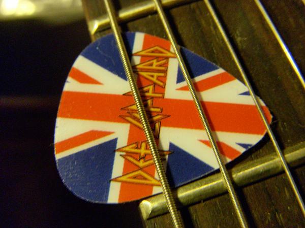 Def Leppard Guitar Pick By Roxy Clark