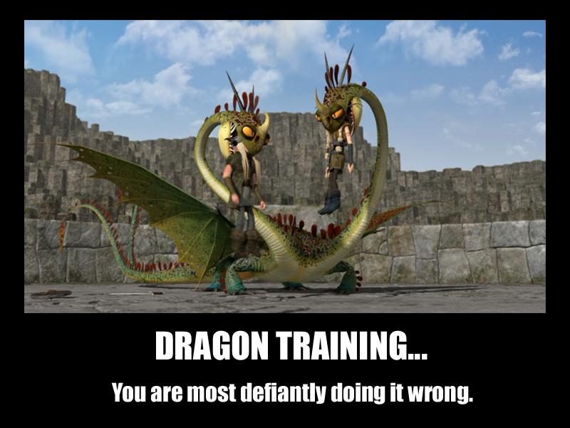Dragon Training by f4113n-4ng31-0f-r4in