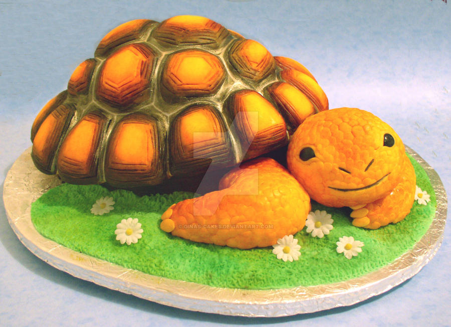 Tortoise Cake by ginas-cakes