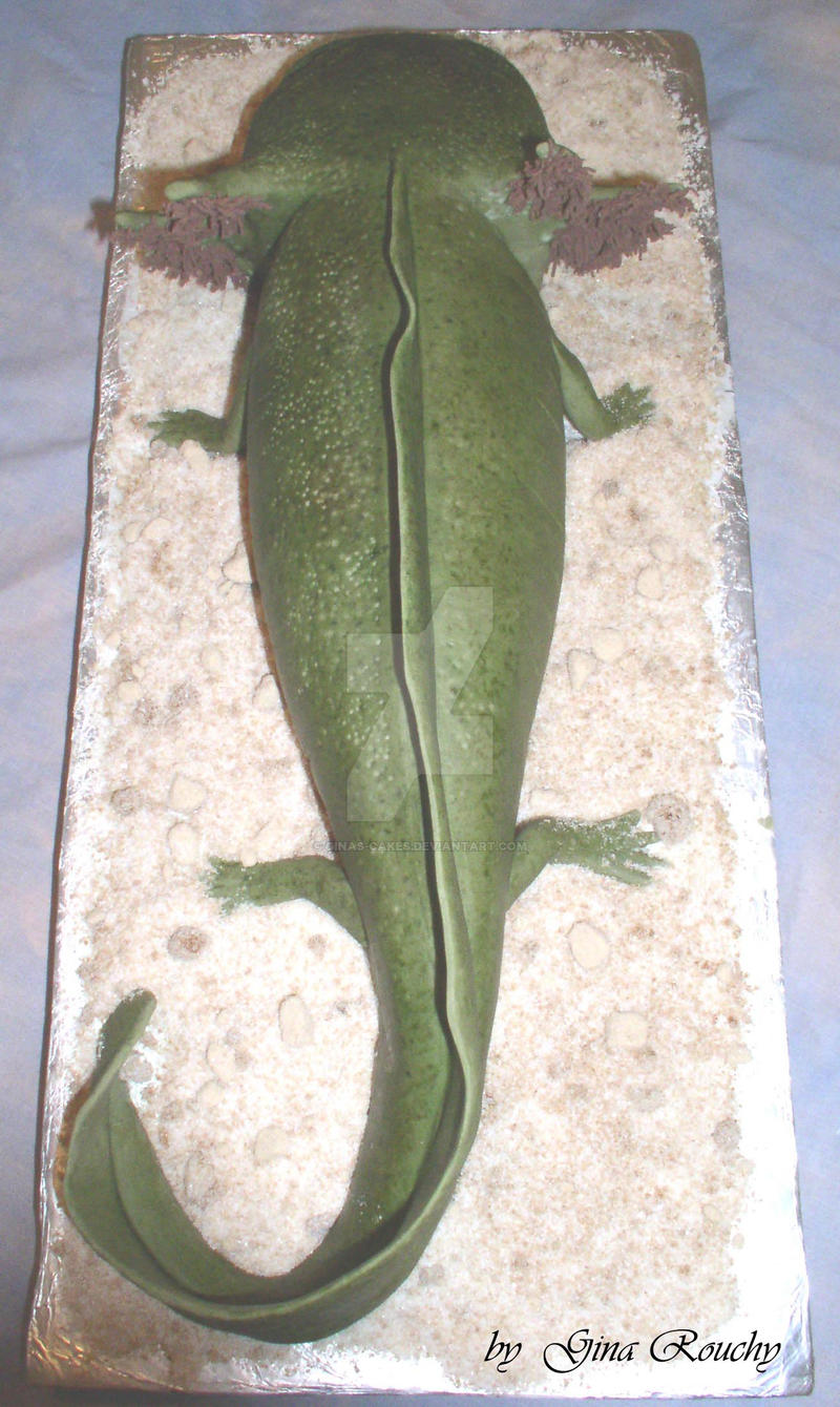 Axolotl cake from the back by ginas-cakes