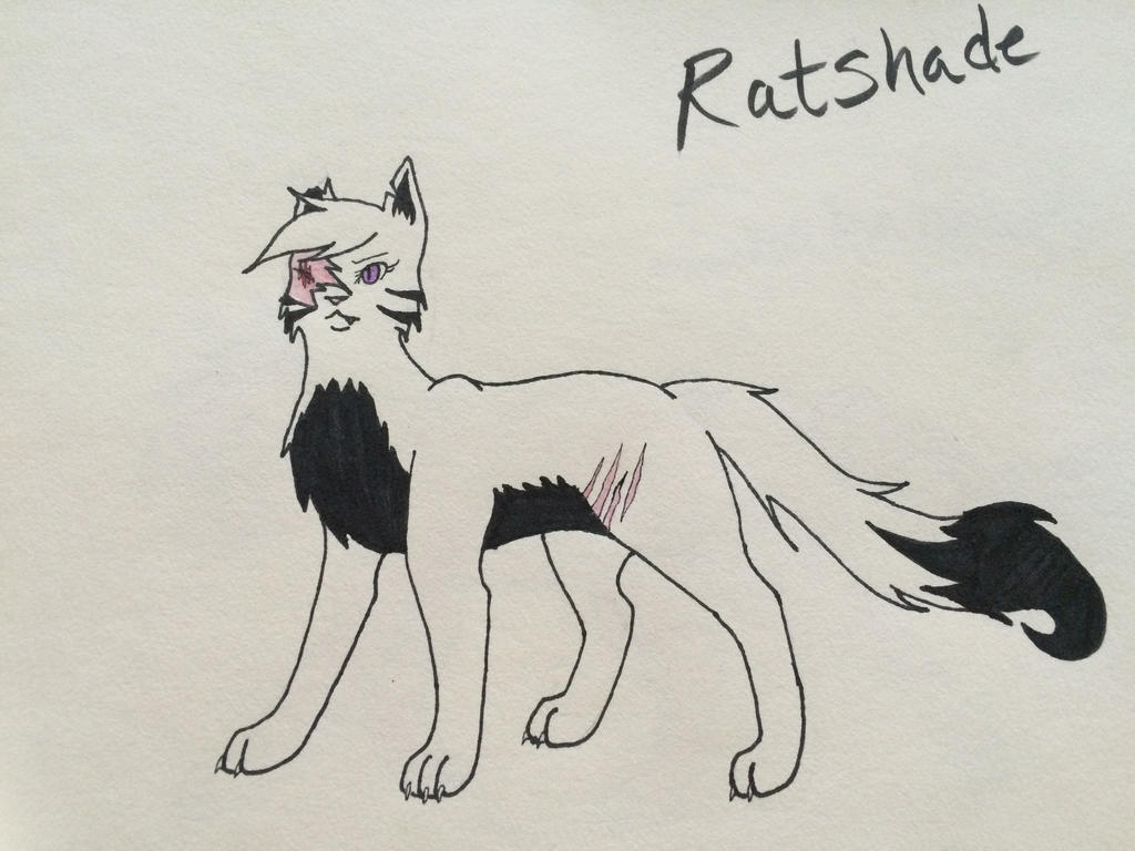 Ratshade (Warrior OC) by HetaliaRper4life