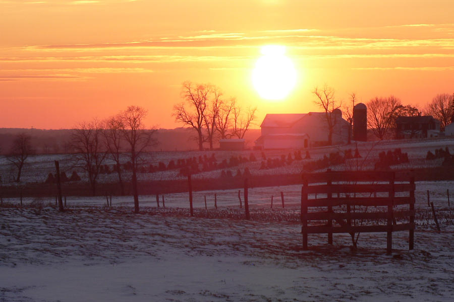 Amish Sunset by dmguthery