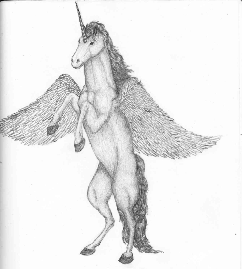 unicorn pegasus thing by xxdarkest angelxx on deviantart