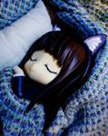 Cats dream too.