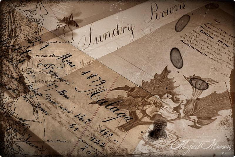 Thornapple by AbigailMooney